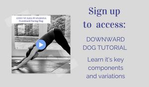 yoga pose tutorial: downward dog