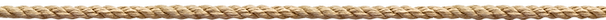 AdobeStock_145534359_edited_edited.png