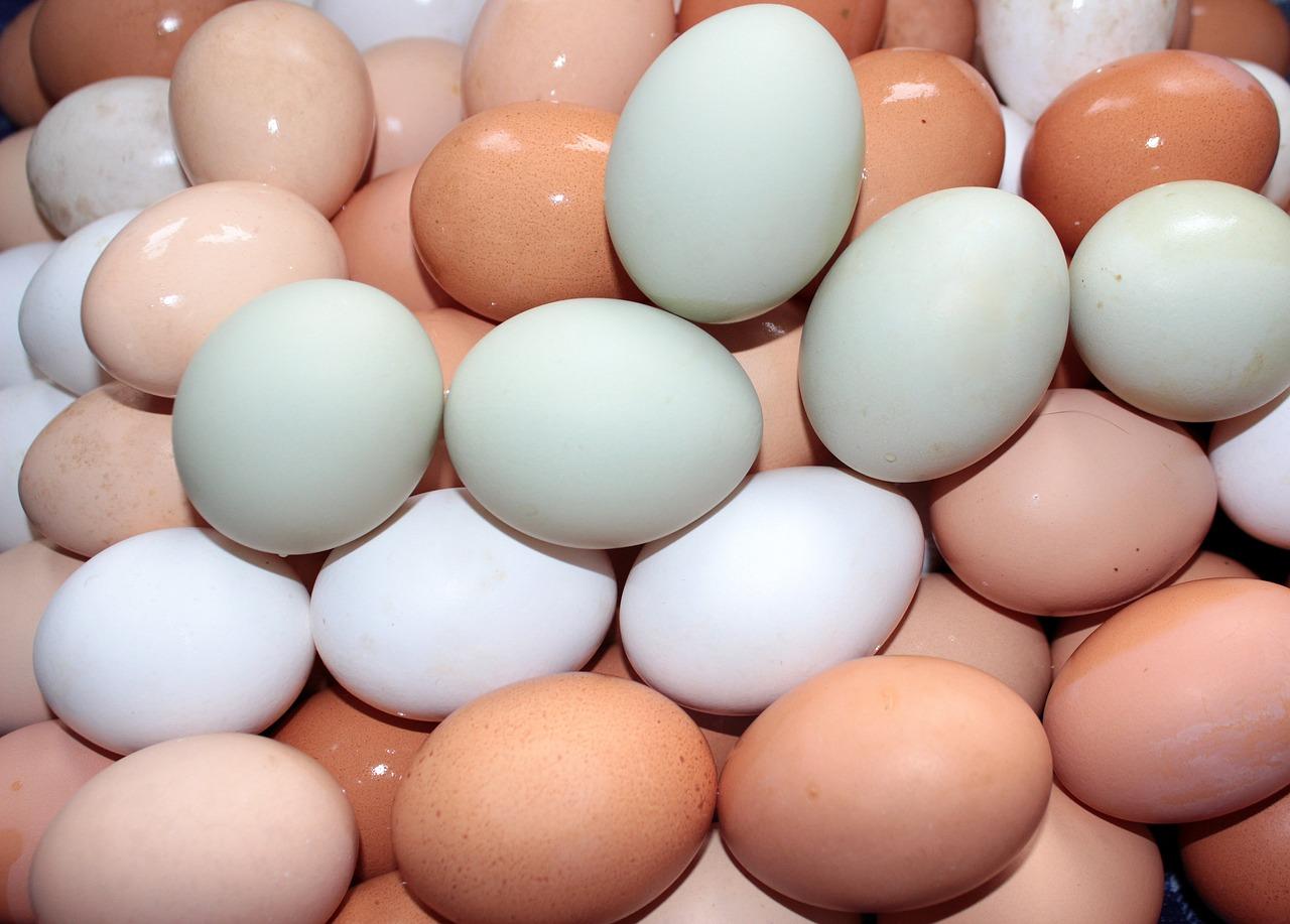 Αβγά διαφόρων χρωμάτων