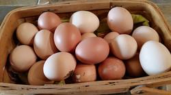 Καλάθι με αβγά