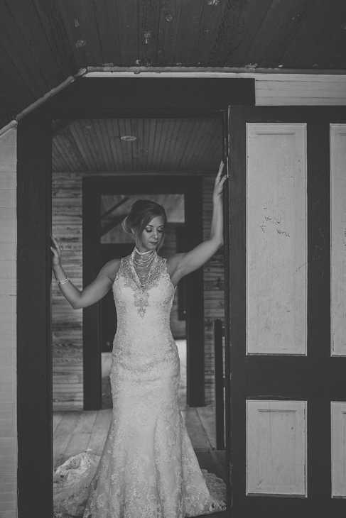 brida portraits wedding pictures