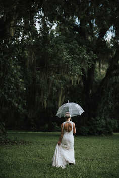 clear umbrella wedding pictures