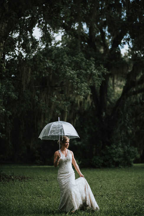 umbrella oak trees wedding pictures