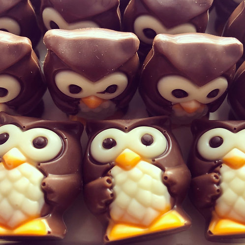 Milk Chocolate Praline Owl