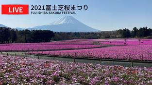 Petit tour au Japon et son fameux mont Fuji en live.. Cliquez sur la photo pour lancer le live..