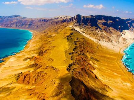 Socotra l'île mystérieuse