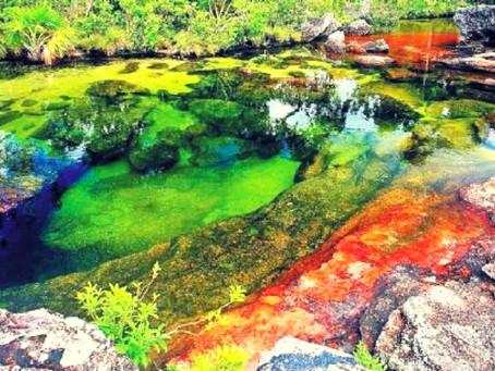 La rivière arc-en-ciel de Caño Cristales