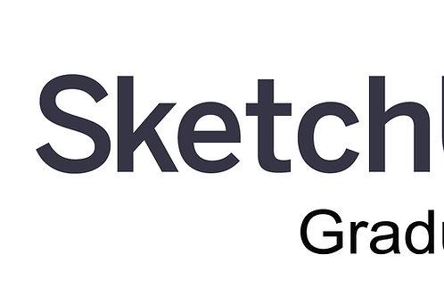 SketchUp Pro 2021 Graduate (Annual)
