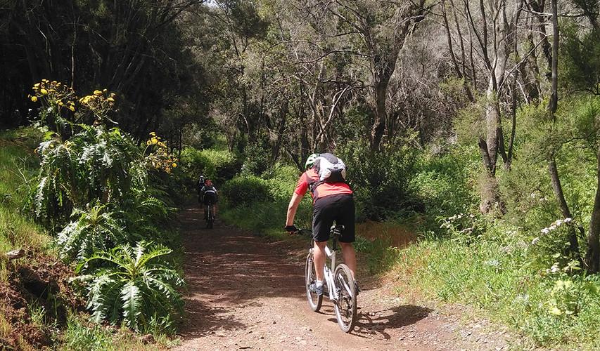 fahrradtour-nationalpark-la-gomera.jpg