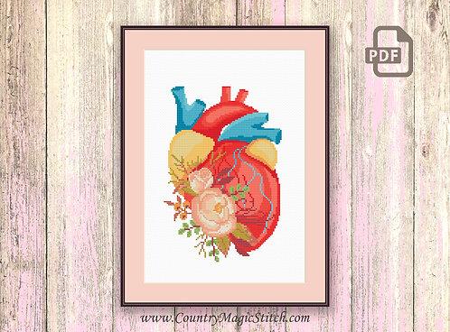Human Heart Cross Stitch Pattern #oth048