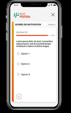 Questionnaire Mobile.png