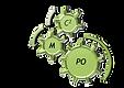 C2MPO logo.png