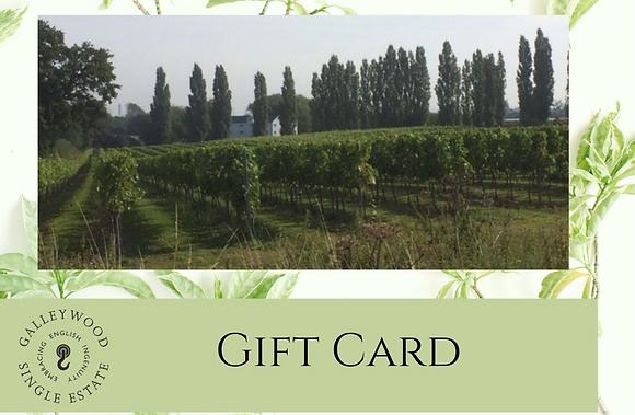 Gift Voucher - Vineyard tour with Afternoon Tea