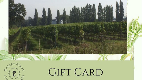 Gift Voucher - Vineyard Tour with Cheese and Charcuterie