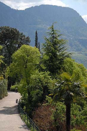 Der Tappeinerweg ist über den Tiroler-Steig bis nach Meran auch leicht mit Kinderwagen zu bewältigen