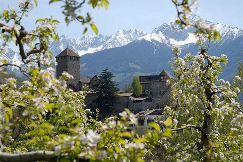Das mittelalterliche Schloss Tirol ist ein beliebtes Ausflugsziel durch seine Greifvogelflugschau und sein Museum