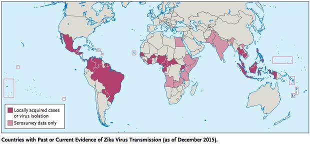 Zika Virus, locations of zika virus, pregnant women warned by cdc, brain damage zika virus, stacey maltman , stacey maltman fnp, the well house, kingston, tn