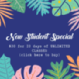 New Student Special.png