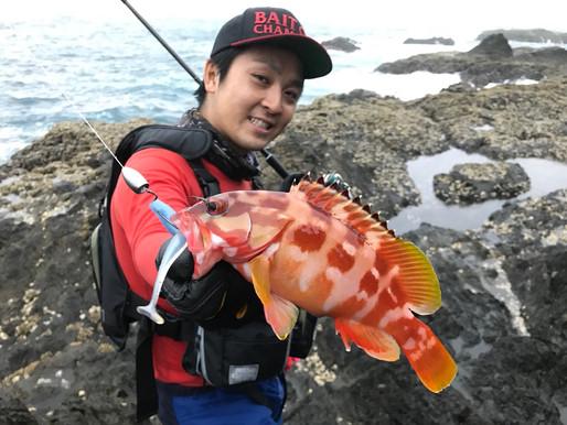 【釣果報告】九州アカハタゲーム