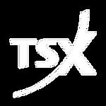 tsx-logo-big-white.png