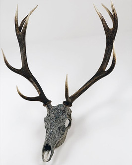 The beautiful 10-point stag. Complimented by a variety or grey Swarovski crystals.