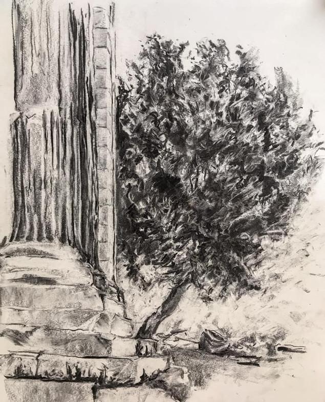 Greece, Erechtheion (Sacred Olive)
