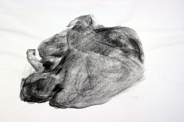 charcoal on newsprint, 24x18in, 2015