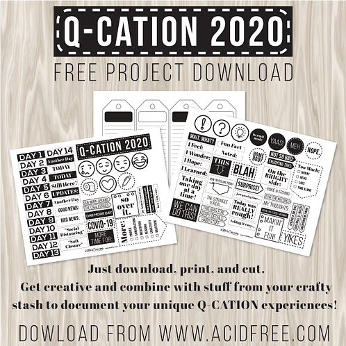 Q-Cation 2020 Download