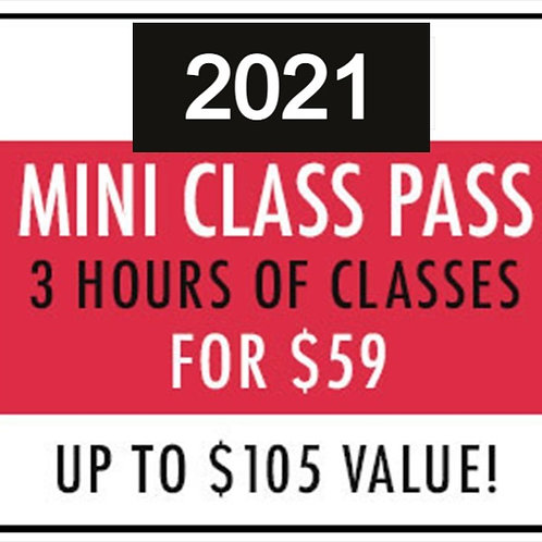 Mini Class Pass—St. Louis SISS