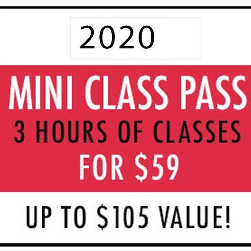 2020 Mini Class Pass