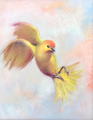 Goldbird Variations 3