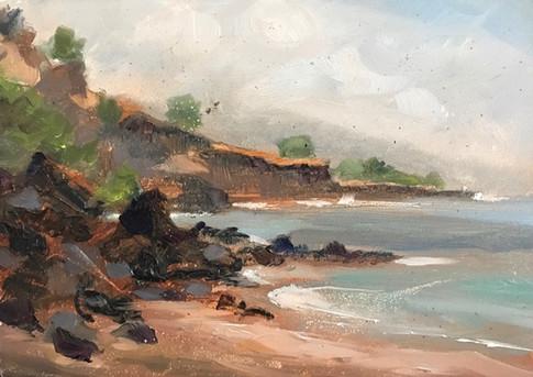 37. Hawaiian Landscape