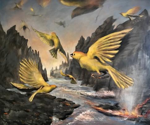1. Hawaiian Birds