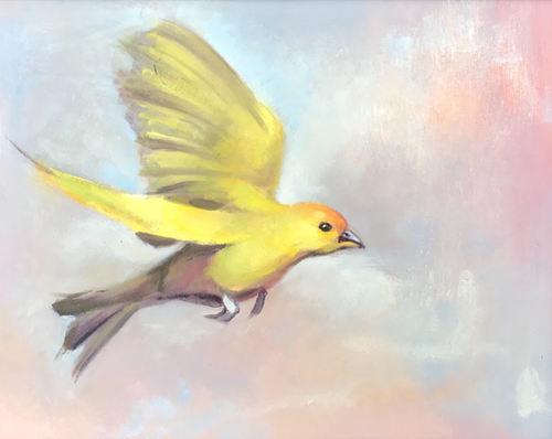 Goldbird Variations 6