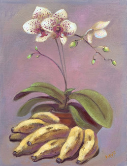 Orchid with Bananas