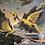 Thumbnail: Gold Bird Variations 3