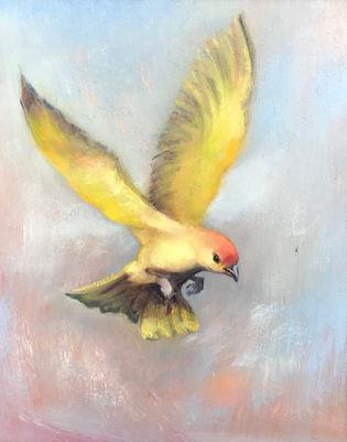 Goldbird Variation 1