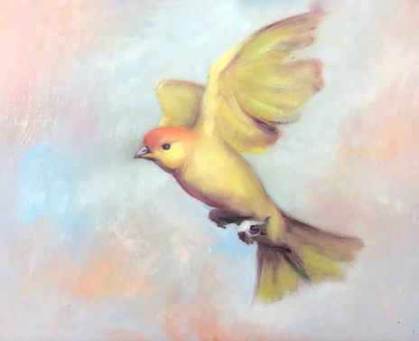 Goldbird Variations 5
