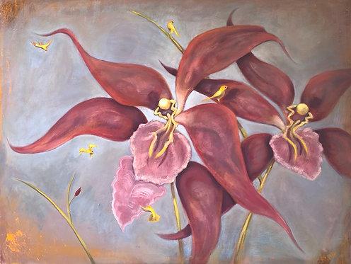 Saffron Orchids