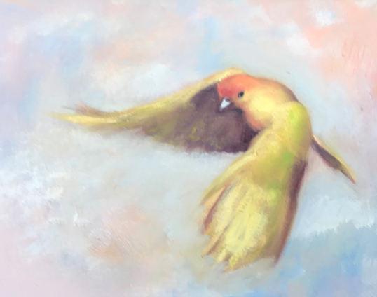 Goldbird Variations 8