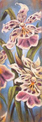 Jurrasic Orchids