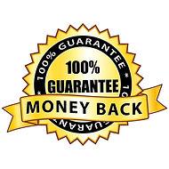 Money back 100% guarantee. Golden icon..