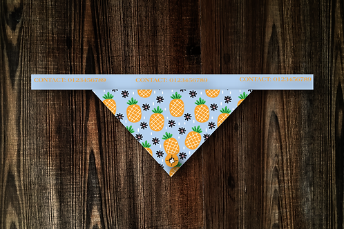 Pineapple Bandana