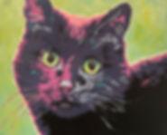 Boo Kitty.jpg