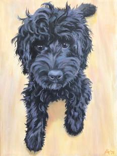 MacDougall Acrylic on Canvas 5.12.21 by Char Mason.jpg