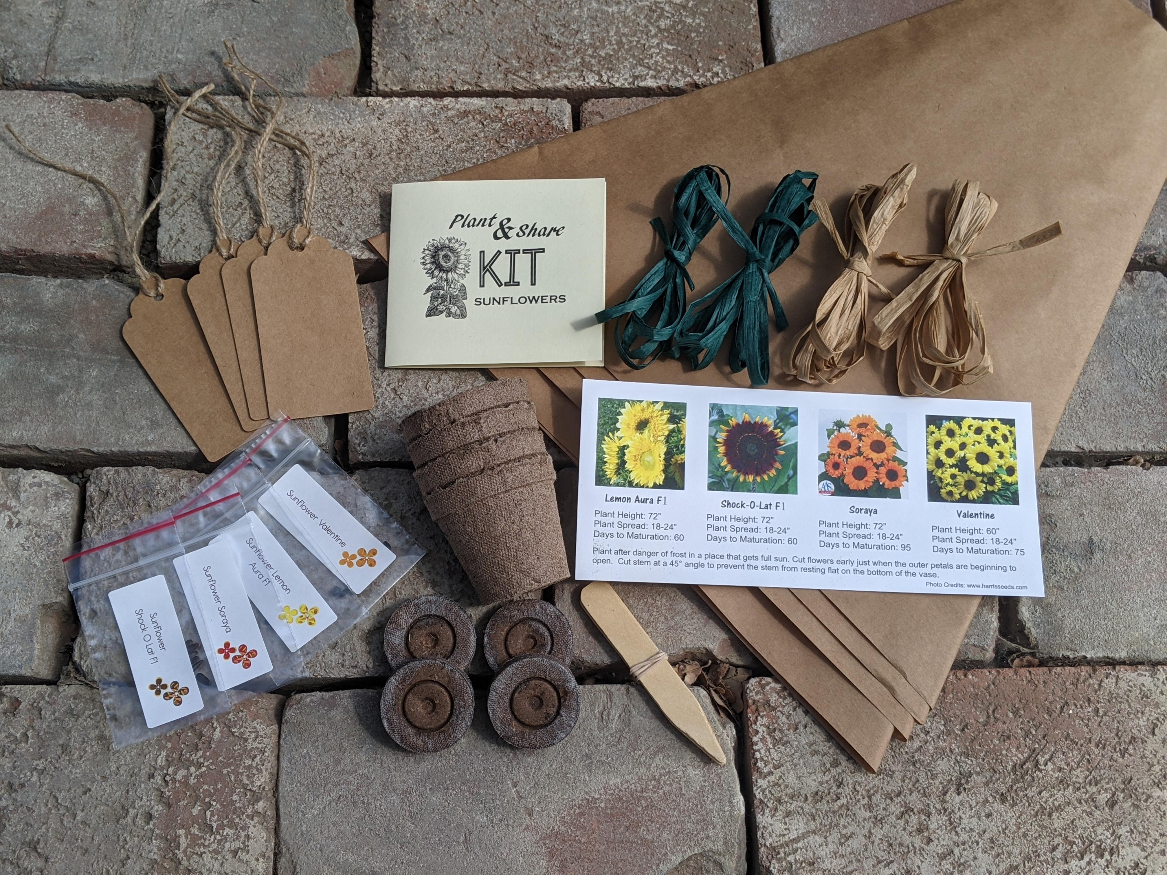 Plant & Share Sunflower Kit