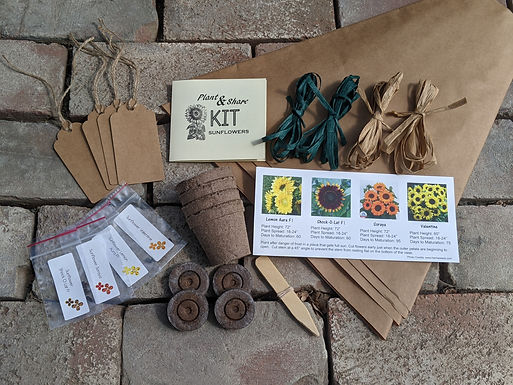 Plant & Share Sunflower Kit with Personalized Message