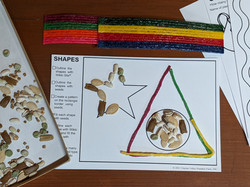 Activity Card in Plant & Play Kit