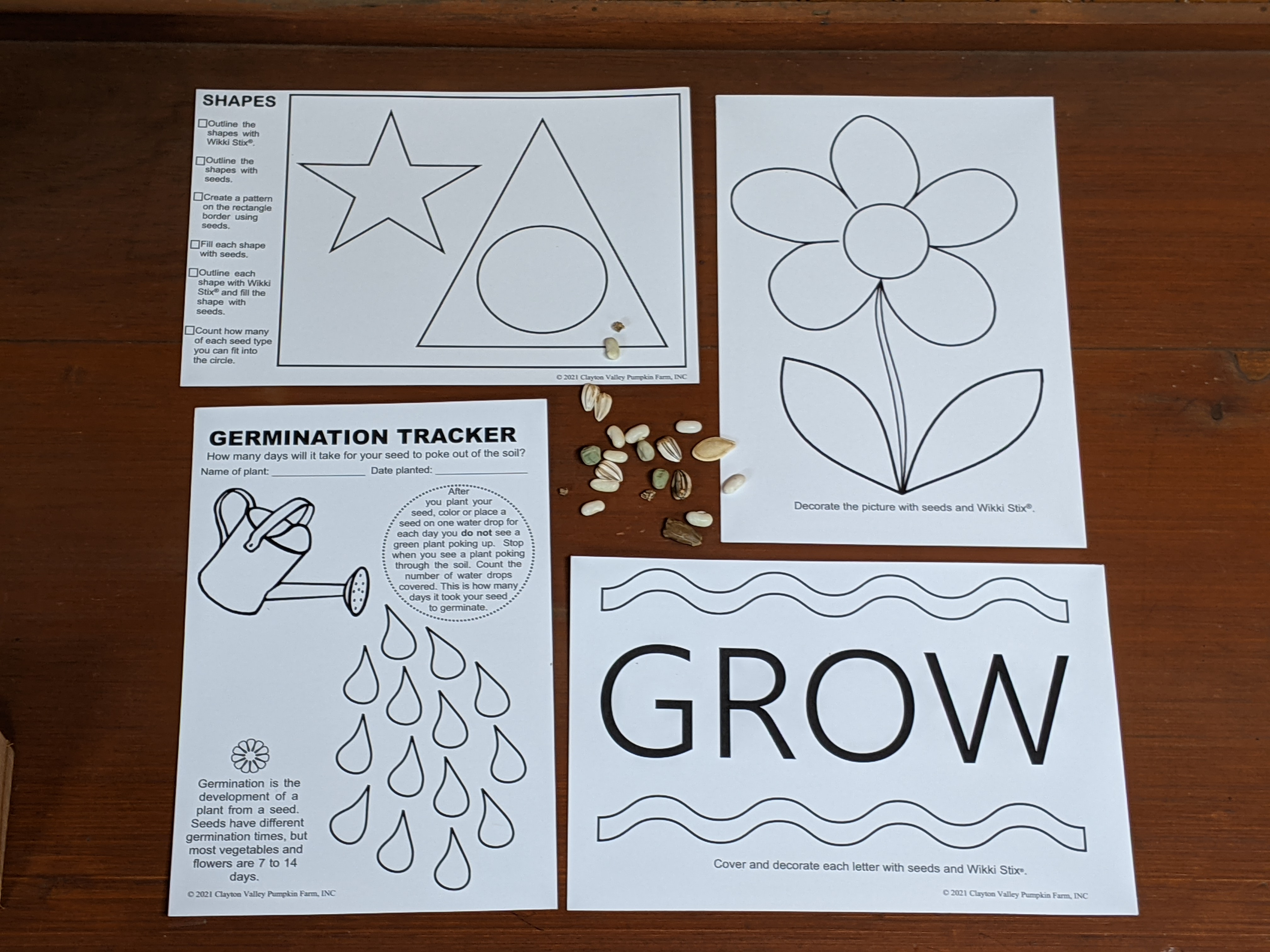 Activity Cards in Plant & Play Kit