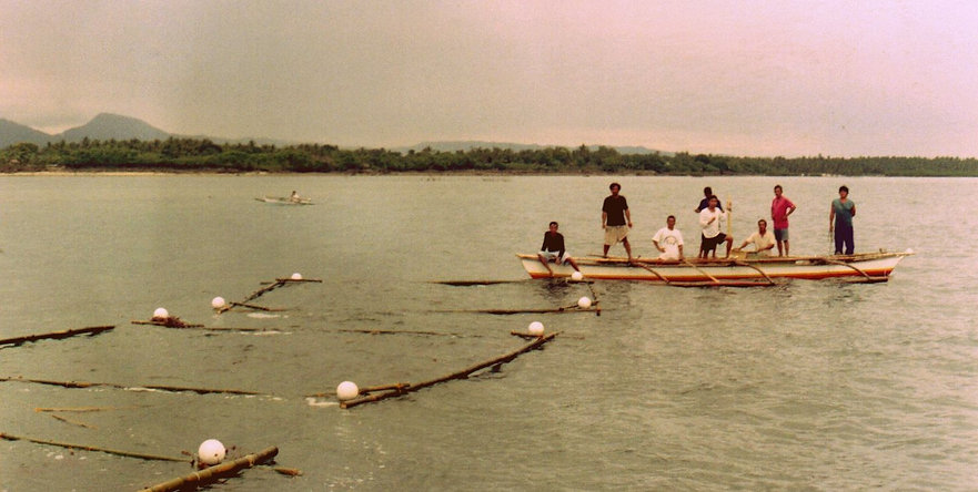 final floating bamboo .jpg